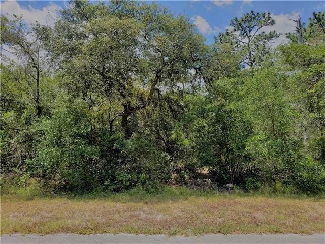 Kumquat Avenue, Eustis, FL 32736 (MLS #G5030695) :: Team Buky