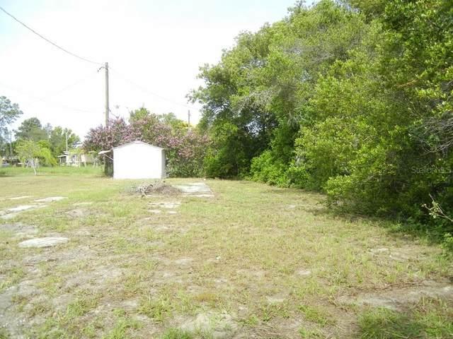34645 Banks Avenue, Leesburg, FL 34788 (MLS #G5030722) :: Griffin Group