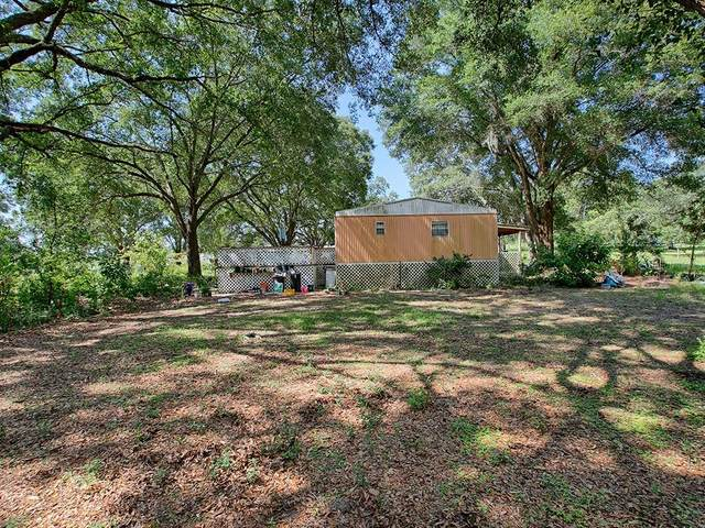 15611 Se 175Th Street, Weirsdale, FL 32195 (MLS #G5030761) :: Delta Realty Int