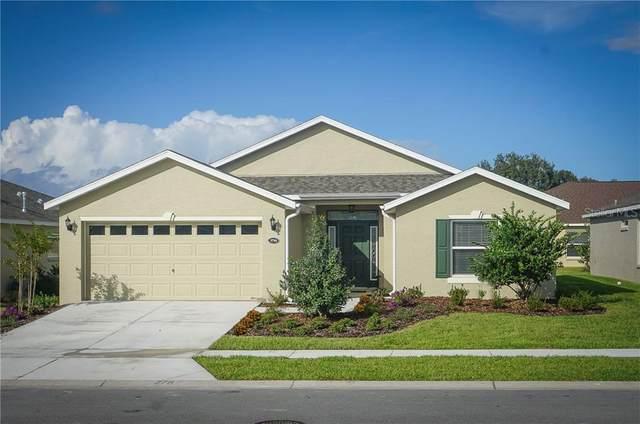 4529 Shenandoah River Trail, Leesburg, FL 34748 (MLS #G5030852) :: Dalton Wade Real Estate Group