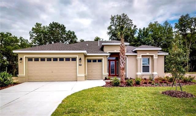 4578 Shenandoah River Trail, Leesburg, FL 34748 (MLS #G5030882) :: Dalton Wade Real Estate Group