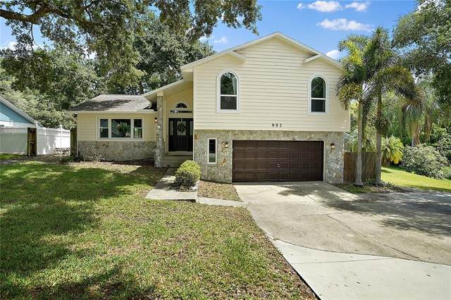 993 Glenmeadow Drive, Winter Garden, FL 34787 (MLS #G5030984) :: Realty Executives Mid Florida