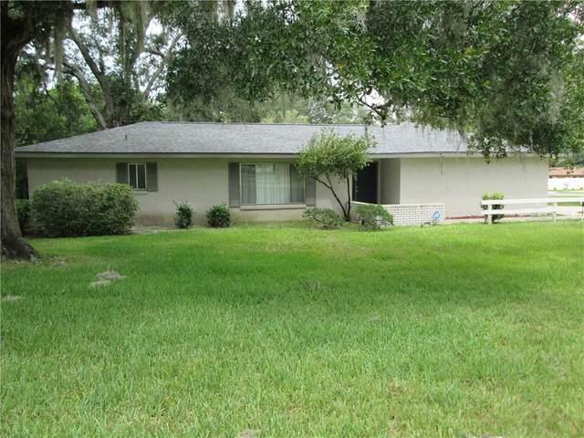 1 Emerald Court Drive, Ocala, FL 34472 (MLS #G5031044) :: Griffin Group