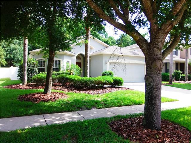 5656 Ansley Way, Mount Dora, FL 32757 (MLS #G5031101) :: Carmena and Associates Realty Group