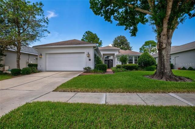 8009 Pine Hollow Drive, Mount Dora, FL 32757 (MLS #G5031236) :: Baird Realty Group