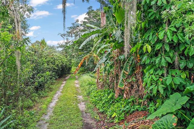 Virginia Avenue, Tavares, FL 32778 (MLS #G5031469) :: Rabell Realty Group