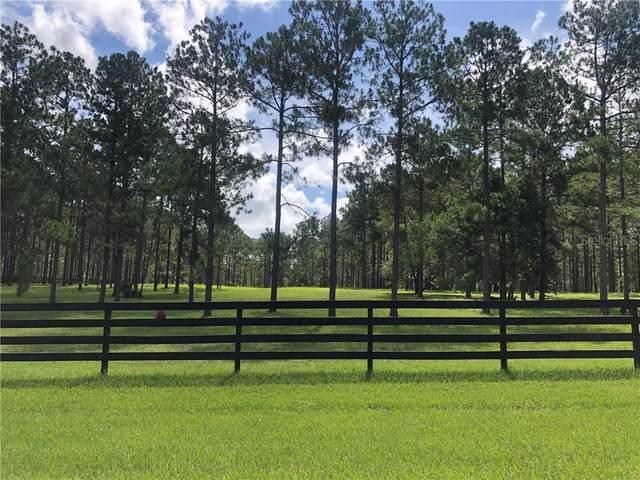 35340 Pinegate Trail, Eustis, FL 32736 (MLS #G5032103) :: Pepine Realty