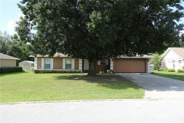 358 Cherry Tree Street, Eustis, FL 32726 (MLS #G5032118) :: The Duncan Duo Team