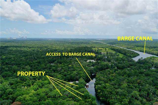 10554 N Dawnflower Point, Crystal River, FL 34428 (MLS #G5032157) :: Griffin Group