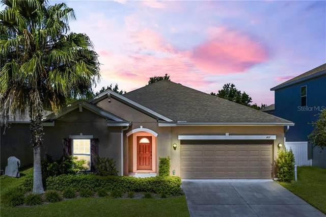 407 Rock Springs Circle, Groveland, FL 34736 (MLS #G5032187) :: Cartwright Realty