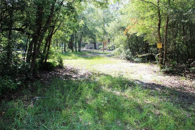 Wiley Lane, Umatilla, FL 32784 (MLS #G5032244) :: Cartwright Realty
