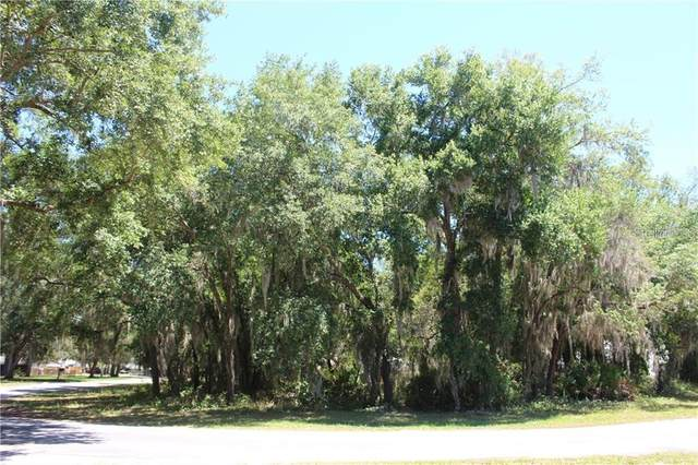 Brasher Lane, Groveland, FL 34736 (MLS #G5032332) :: Cartwright Realty