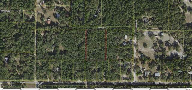 Address Not Published, Webster, FL 33597 (MLS #G5032357) :: Zarghami Group