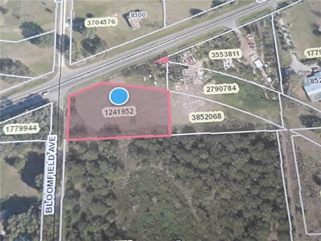County Road 48, Yalaha, FL 34797 (MLS #G5032631) :: Alpha Equity Team
