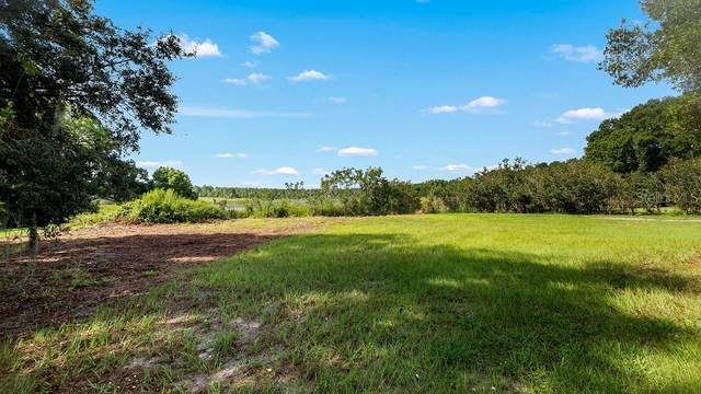 County Road 48, Yalaha, FL 34797 (MLS #G5033118) :: Lockhart & Walseth Team, Realtors