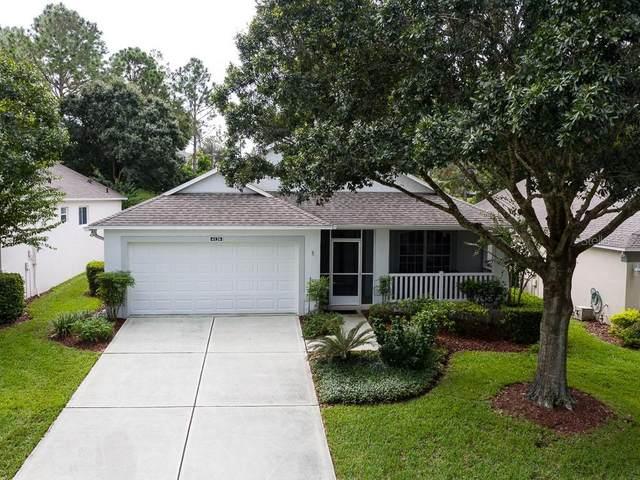 4126 Capland Avenue, Clermont, FL 34711 (MLS #G5033438) :: Burwell Real Estate
