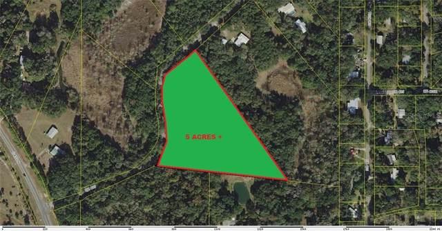 000 Cr 400, Lake Panasoffkee, FL 33538 (MLS #G5033650) :: CENTURY 21 OneBlue