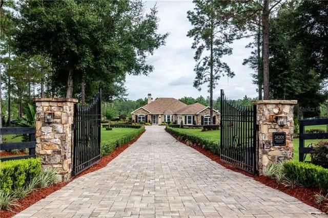 24201 Greenwood Crossing, Eustis, FL 32736 (MLS #G5033722) :: Bustamante Real Estate