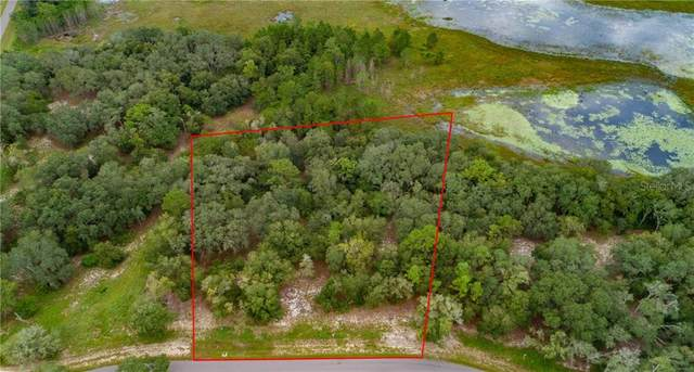 3138 Bright Lake Circle, Leesburg, FL 34748 (MLS #G5033744) :: EXIT King Realty