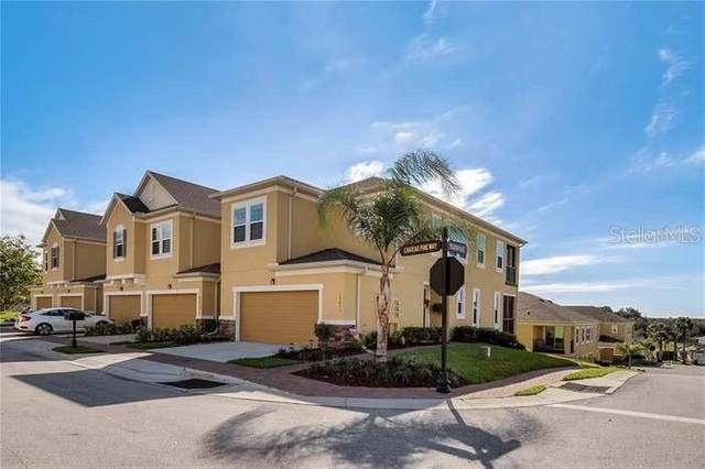 17454 Chateau Pine Way, Clermont, FL 34711 (MLS #G5033787) :: The Light Team