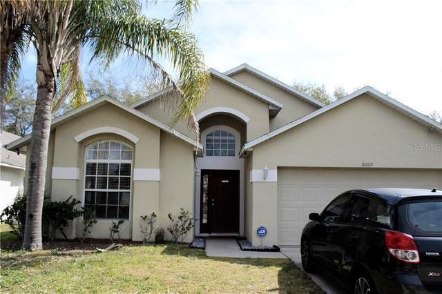 16609 Rising Star Drive, Clermont, FL 34714 (MLS #G5033880) :: The Duncan Duo Team