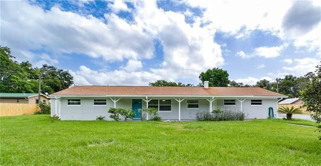 1090 Bay Road, Mount Dora, FL 32757 (MLS #G5033891) :: Team Bohannon Keller Williams, Tampa Properties