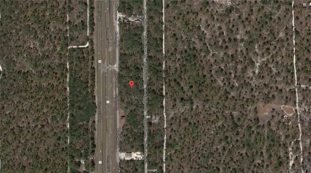 17112 Nicasio Jay Avenue, Weeki Wachee, FL 34614 (MLS #G5033980) :: Team Buky