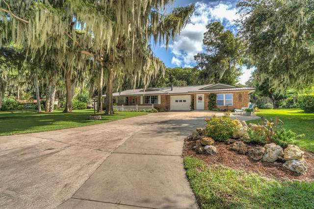 11251 Dead River Road, Tavares, FL 32778 (MLS #G5034007) :: Team Buky