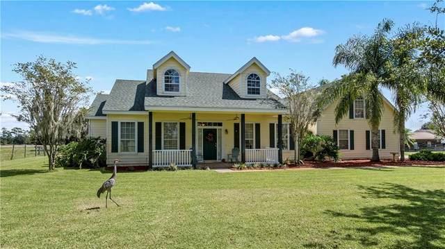 10620 Fiesta Street, Clermont, FL 34711 (MLS #G5034008) :: Premier Home Experts