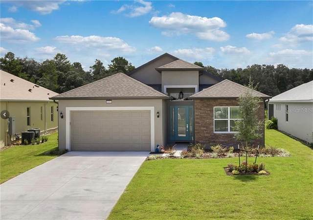 8484 Bridgeport Bay Circle, Mount Dora, FL 32757 (MLS #G5034088) :: Cartwright Realty