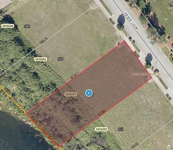 17316 Pesce Loop, Montverde, FL 34756 (MLS #G5034274) :: The Kardosh Team