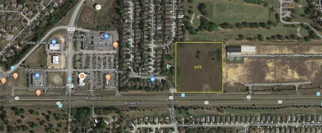 14601 Green Valley Boulevard, Clermont, FL 34711 (MLS #G5034365) :: Griffin Group