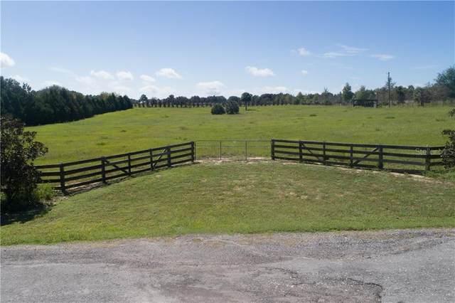 20902 Camphortree Road, Eustis, FL 32736 (MLS #G5034437) :: Delgado Home Team at Keller Williams