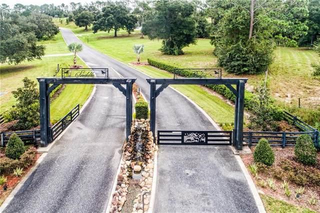 41513 Saddle Ridge Lane, Weirsdale, FL 32195 (MLS #G5034451) :: Baird Realty Group
