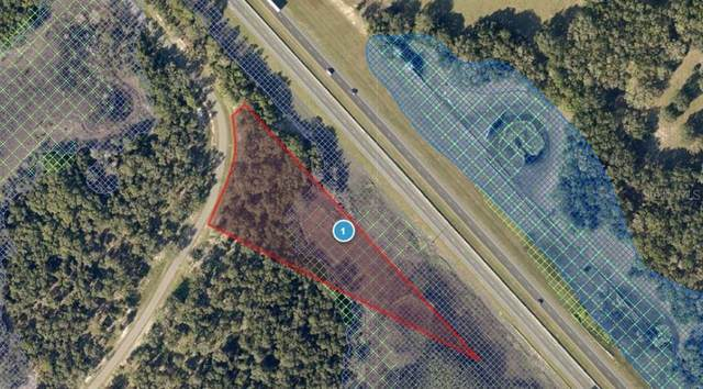 3125 Bright Lake Circle, Leesburg, FL 34748 (MLS #G5034570) :: Young Real Estate