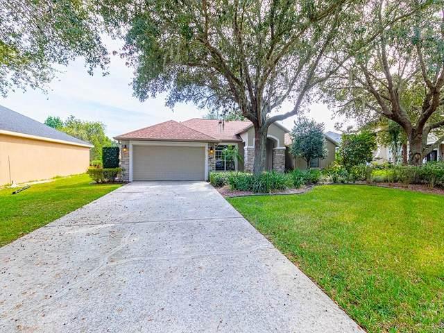 13012 Summerlake Way, Clermont, FL 34711 (MLS #G5034832) :: Frankenstein Home Team