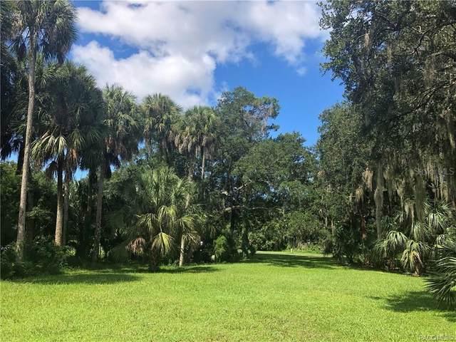 11835 W Timberlane Drive, Homosassa, FL 34448 (MLS #G5035056) :: Baird Realty Group