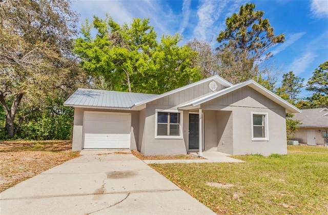 40127 Orange Circle, Lady Lake, FL 32159 (MLS #G5035081) :: The Duncan Duo Team