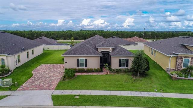 227 Messina Place, Howey in the Hills, FL 34737 (MLS #G5035115) :: Pepine Realty