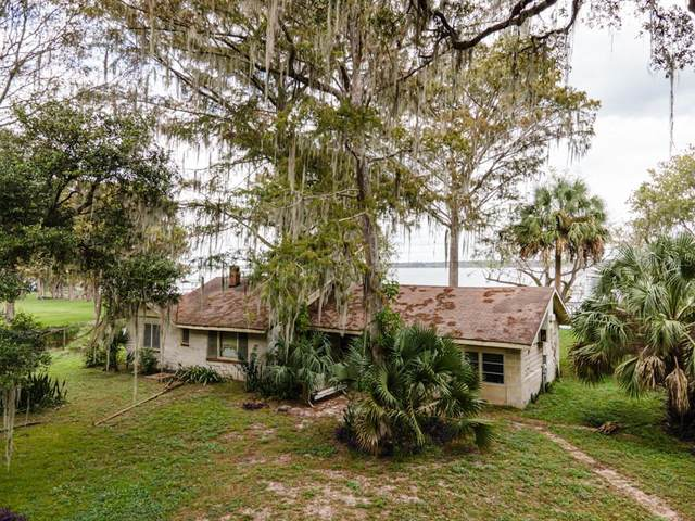 3275 Cr 431B, Lake Panasoffkee, FL 33538 (MLS #G5035131) :: Griffin Group