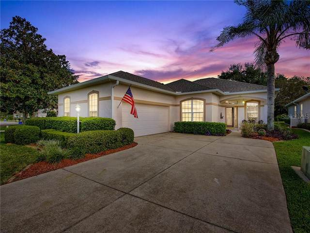 17125 SE 116TH COURT Road, Summerfield, FL 34491 (MLS #G5035213) :: Bridge Realty Group