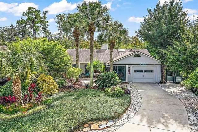 13502 Country Club Drive, Tavares, FL 32778 (MLS #G5035222) :: Visionary Properties Inc