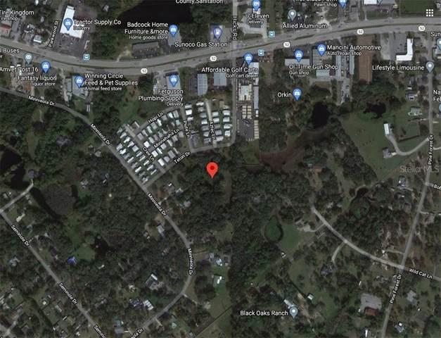 Teton Drive, Hudson, FL 34669 (MLS #G5035261) :: Keller Williams Realty Peace River Partners