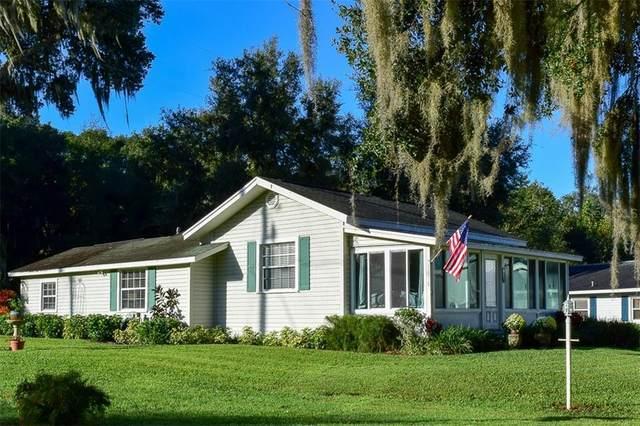 13990 SE 154TH Lane, Weirsdale, FL 32195 (MLS #G5035371) :: Bustamante Real Estate