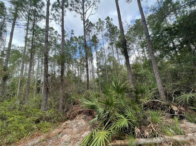 Lot 47 SW 61ST Street, Cedar Key, FL 32625 (MLS #G5035776) :: Bustamante Real Estate