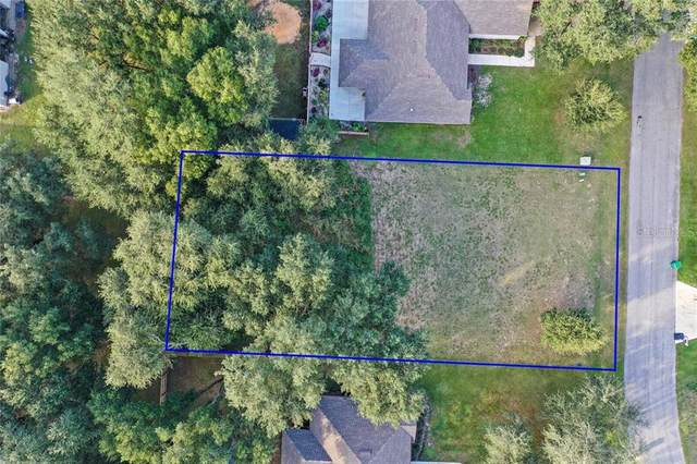 831 Deep Wood Court, Fruitland Park, FL 34731 (MLS #G5035835) :: EXIT King Realty