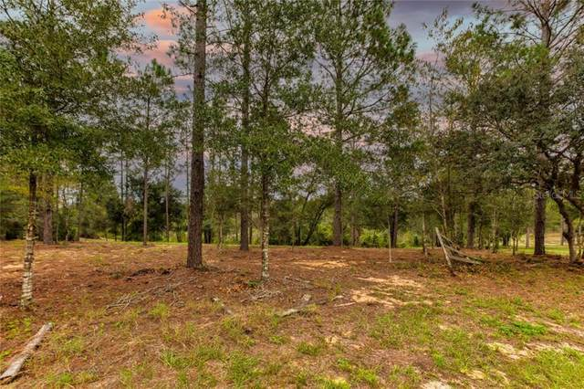 Calhoun Road, Eustis, FL 32726 (MLS #G5035905) :: Griffin Group