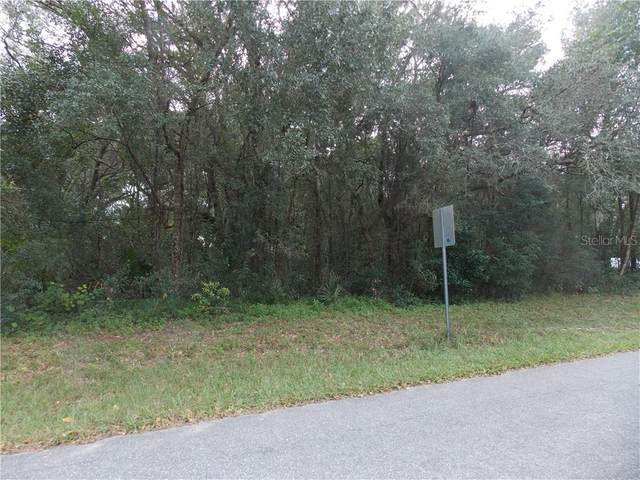 Lido Avenue, Mount Plymouth, FL 32776 (MLS #G5036032) :: Burwell Real Estate