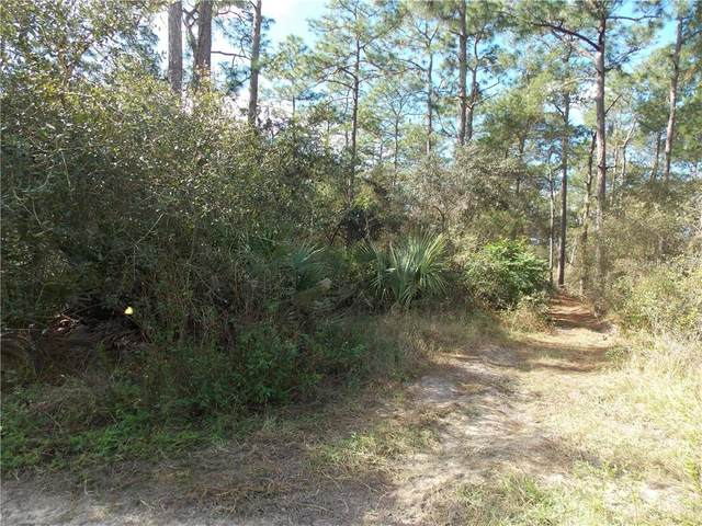 Central Avenue, Umatilla, FL 32784 (MLS #G5036033) :: Griffin Group