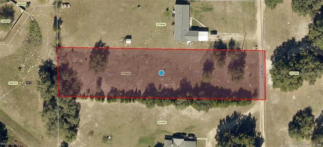 Apiary Road, Grand Island, FL 32735 (MLS #G5036068) :: Young Real Estate